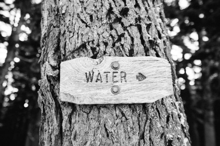 Vattentrender trender inom vatten vatten & mat